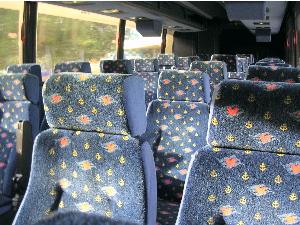 クルーズバス(座席がミッキー柄)
